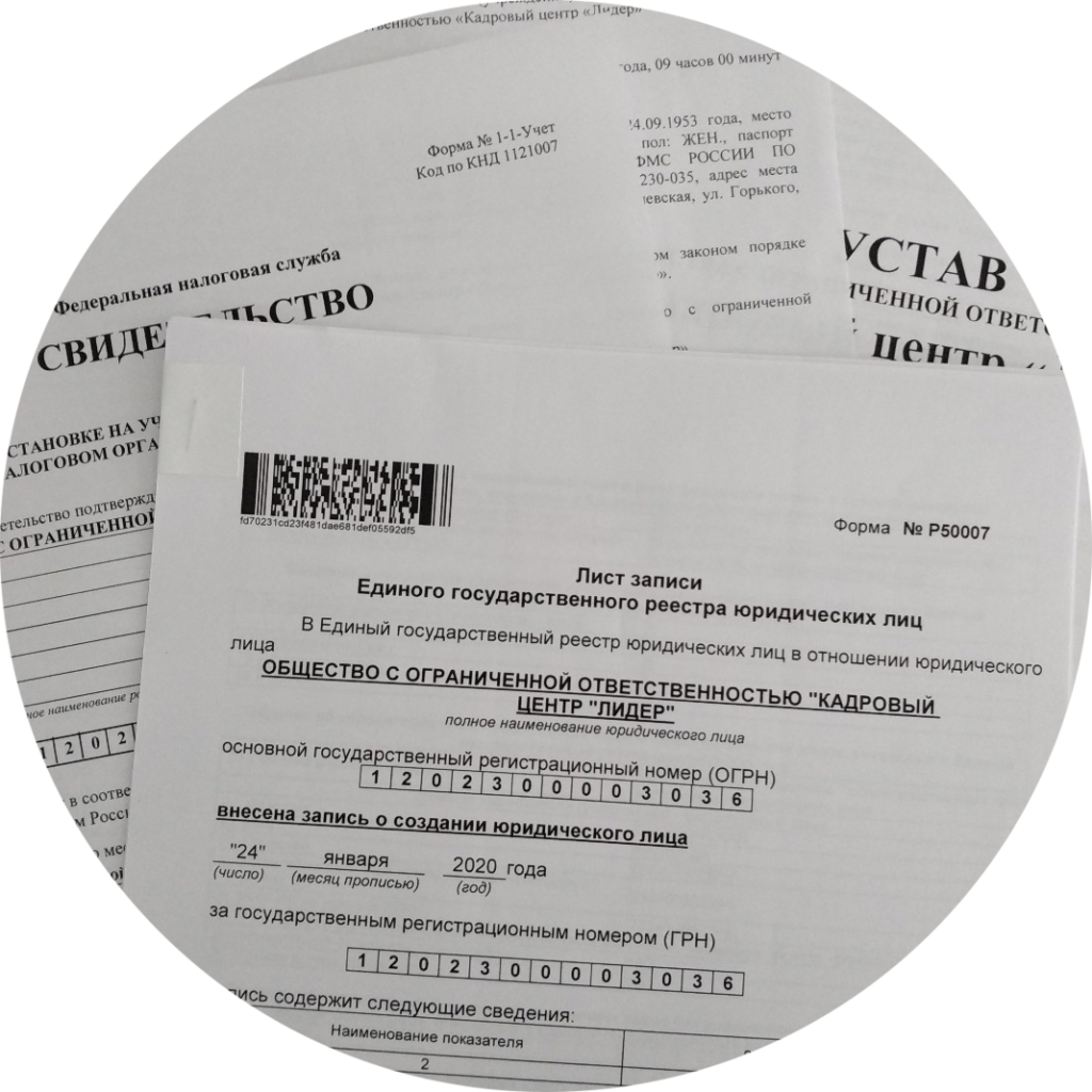 Обжаловать отказ налоговой в регистрации изменений в ЕГРЮЛ, смена адреса, директора